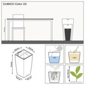 VASO CUBICO COLOR