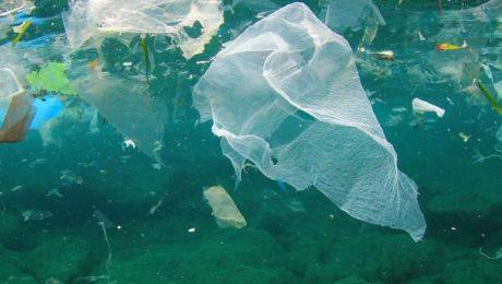 Ecopots riciclaggio